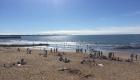 A seulement 200 m de la plage. Profitez des plages, des criques et de la pêche à pied.