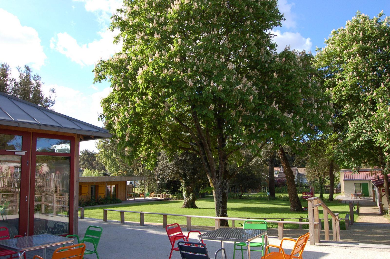 Notre engagement pour l'environnement: vue du parc depuis la terrasse de la Grande Maison
